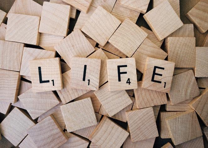 life-1662879_1280